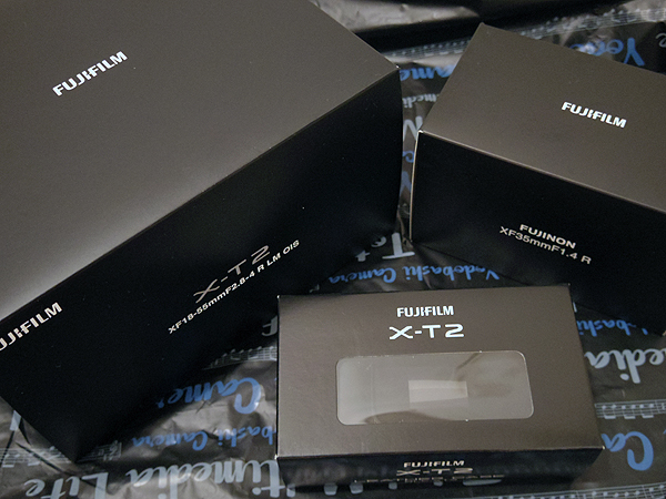 新しく買ったカメラで撮る最初の一枚は林檎にしよう
